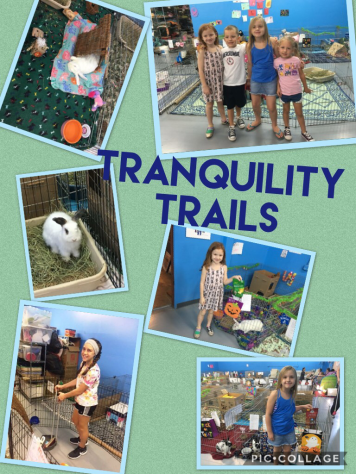 Tranquility Trails 2